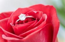 Algéroise pour mariage
